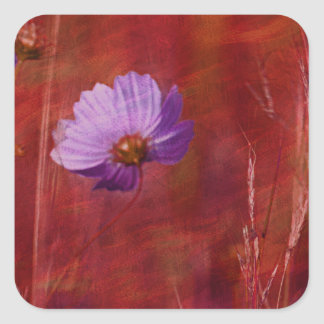 Cosmos Flower Gifts Square Sticker