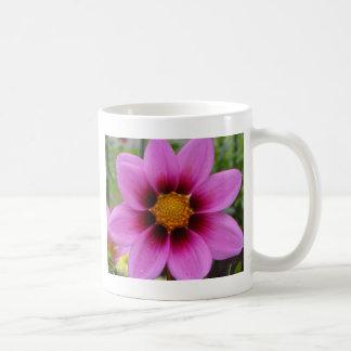 Cosmos Flower Classic White Coffee Mug