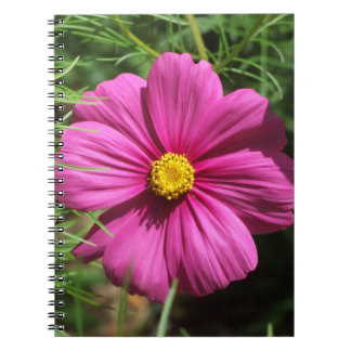 Cosmos Flower Notebook