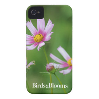 Cosmos Flowers iPhone 4 Cover