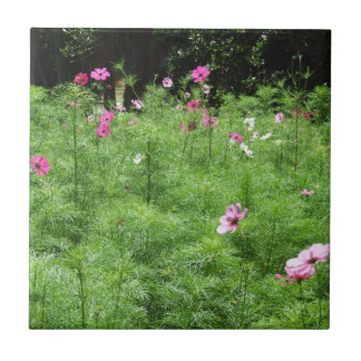 Cosmos Flowers Tile