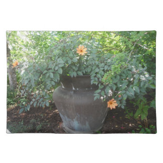 Cosmos in a Pot Placement Placemat