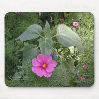 Cosmos in the Garden Mouse Pad