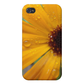 Cosmos iPhone 4/4S Case