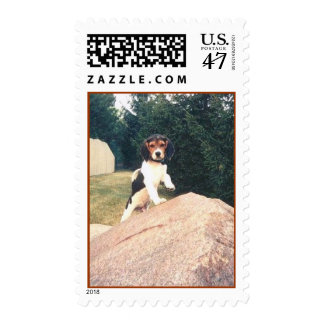 Cosmos Pup Postage