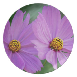 Cosmos rosado bonito y su significado plato de comida
