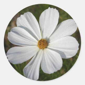 Cosmos Round Sticker