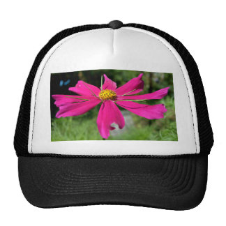 Cosmos Trucker Hat