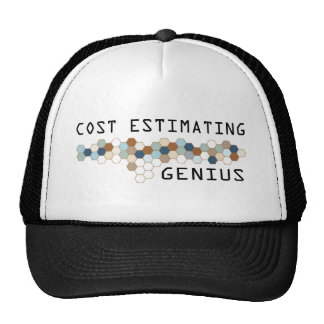Cost Estimating Genius Hats