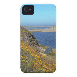 Costa California de Reyes del punto de la escena iPhone 4 Protectores