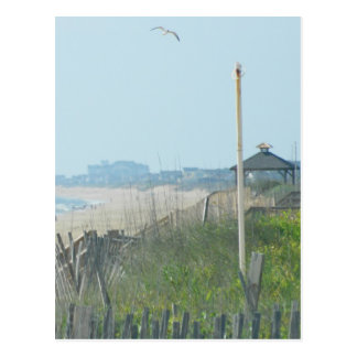 Costa costa de Carolina del Norte del pato Postal