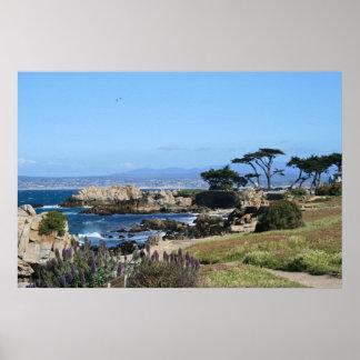 Costa costa de la bahía de Monterey, foto de la pr Posters