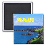 Costa costa de Maui - Hawaii Imán Cuadrado