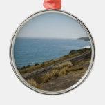 Costa costa de Santa Barbara con las pistas de fer Adornos De Navidad