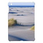 Costa costa del paraíso con las dunas de arena tex iPad mini cárcasa