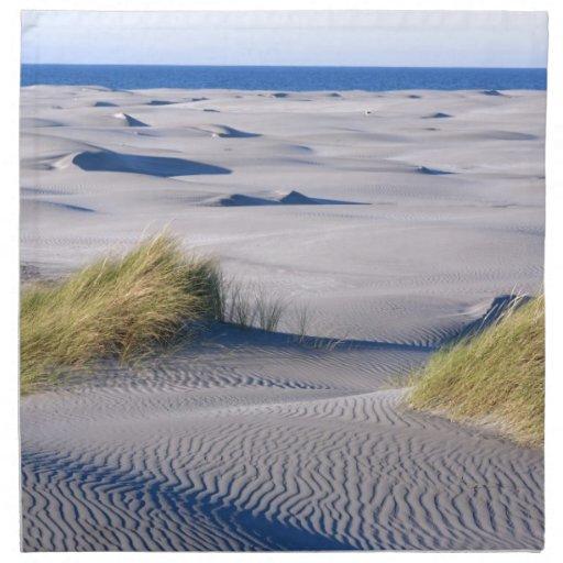 Costa costa del paraíso con las dunas de arena tex servilleta de papel