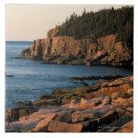 Costa costa del parque nacional del Acadia, Maine Azulejo Cuadrado Grande