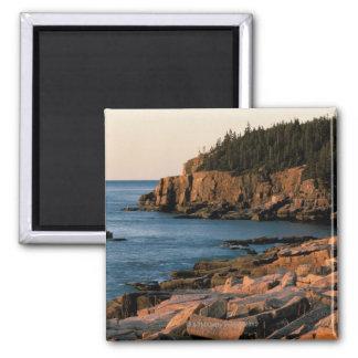 Costa costa del parque nacional del Acadia, Maine Imán Cuadrado