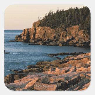 Costa costa del parque nacional del Acadia, Maine Pegatina Cuadrada