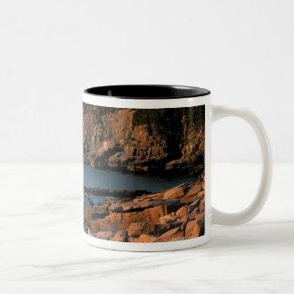 Costa costa del parque nacional del Acadia, Maine Taza De Dos Tonos