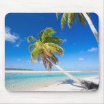 Costa costa tropical tapete de ratón