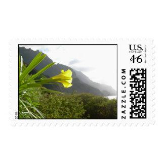 Costa de Kauai