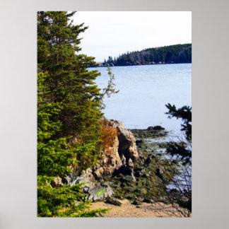 Costa de Maine de la marea baja Posters