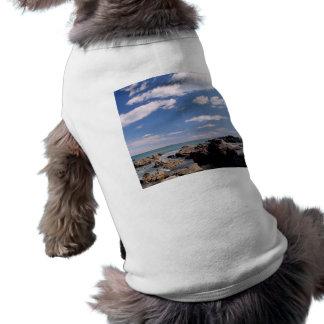 Costa de Nueva Zelanda Ropa De Perro