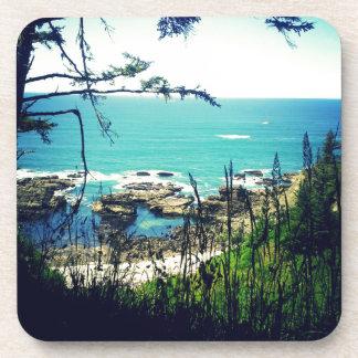 Costa de Oregon Posavaso