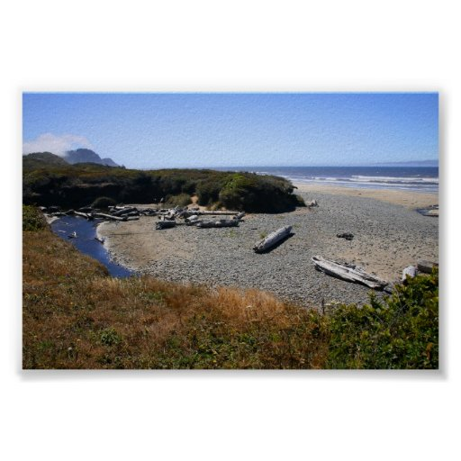 Costa de Oregon Póster