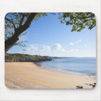 Costa de Pembrokeshire del Pembroke de la bahía de Tapete De Raton