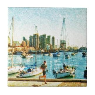 Costa de San Diego por el mac de Shawna Teja Ceramica