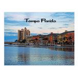 Costa de Tampa la Florida Postales