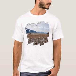Costa del Alaskan de la CA Playera