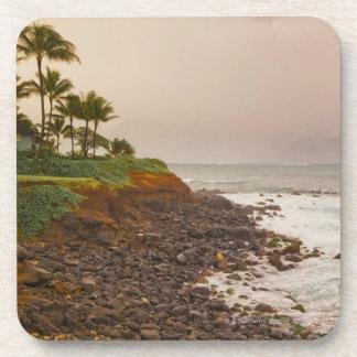 Costa del norte, Maui, Hawaii, los E.E.U.U. Posavasos De Bebidas