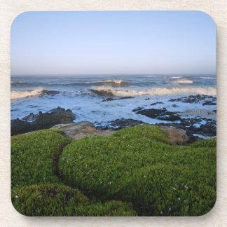 Costa grande de Sur de California en el amanecer Posavasos De Bebidas