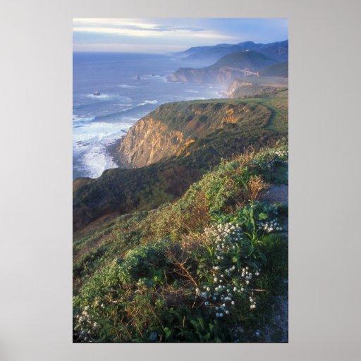Costa grande Vista de Sur Poster