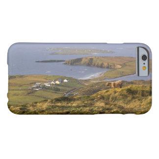 Costa irlandesa pastoral funda de iPhone 6 barely there
