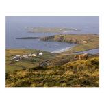 Costa irlandesa pastoral postal