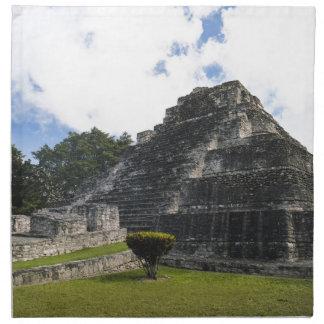 Costa Maya Chacchoben Mayan Ruins Cloth Napkin