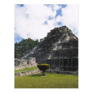 Costa Maya Chacchoben Mayan Ruins Postcard
