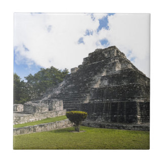 Costa Maya Chacchoben Mayan Ruins Tile