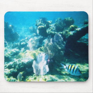 Costa Maya Reef Mousepad