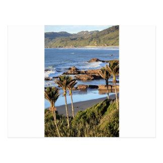 Costa oeste Nueva Zelanda de las palmas de Nikau Tarjeta Postal