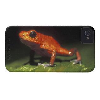 Costa Rica, Alajuela Province, Close-up of Case-Mate iPhone 4 Case