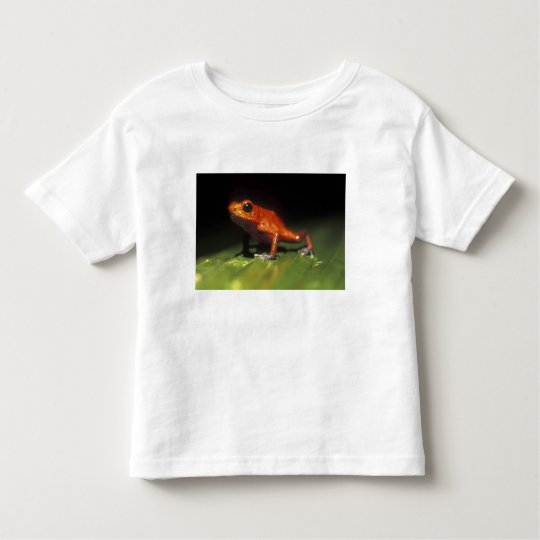 Costa Rica, Alajuela Province, Close-up of Toddler T-shirt