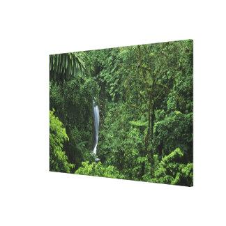 Costa Rica, Arenal Volcano area, Hanging Bridges Canvas Print