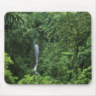 Costa Rica, Arenal Volcano area, Hanging Bridges Mouse Pad