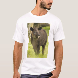 Costa Rica. Bairdis Tapir Tapirus bairdii) T-Shirt