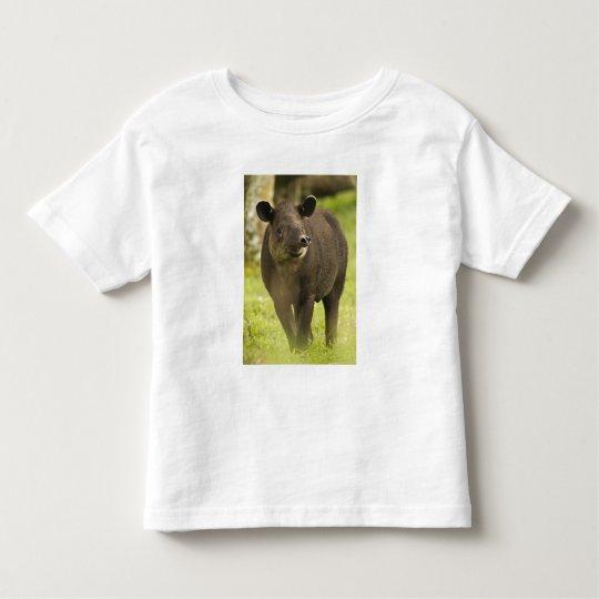 Costa Rica. Bairdis Tapir Tapirus bairdii) Toddler T-shirt